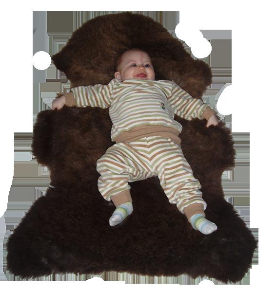 Minimundus baby collegetröja och midjebyxor av 100% ekologisk bomullsvelour Coloured by Nature färgväxande bomull grön brun natur