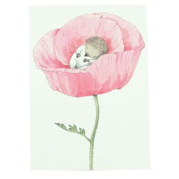 Gratulationskort Lilla kotten bebis dubbelkort med kuvert 15x11 cm